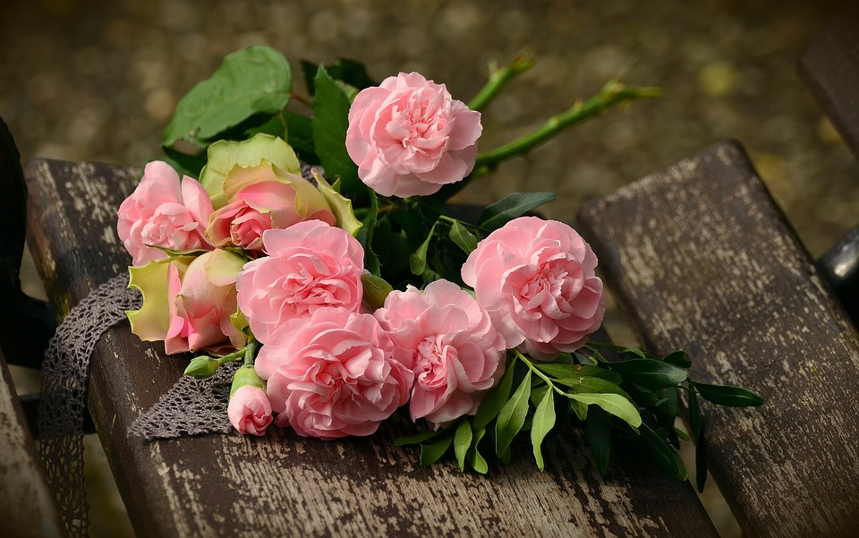 Kwiaty dla każdego