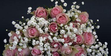 Kwiaty i ich wysyłka