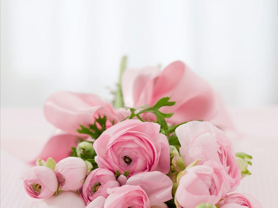 A dzisiaj, podaruję Ci kwiaty…