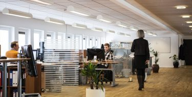 Biura dla wymagających