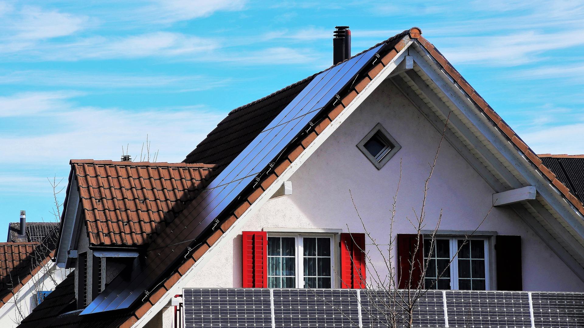 Gonty na dachach  – powrót do korzeni